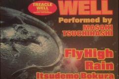 FLY HIGH(MAXI SG)